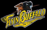 Flyin' Buffalo