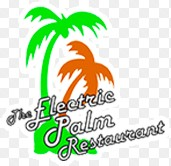 The Electric Palm