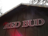 The Red Bud